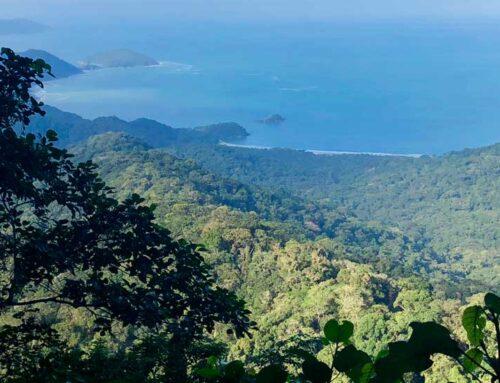Trilhas, Cachoeiras, Praias e muita natureza. Conheça o Parque Estadual de Ilhabela!