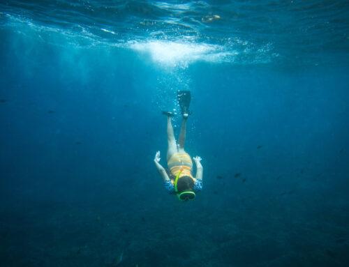 Mergulho para iniciantes: tudo que você precisa saber!